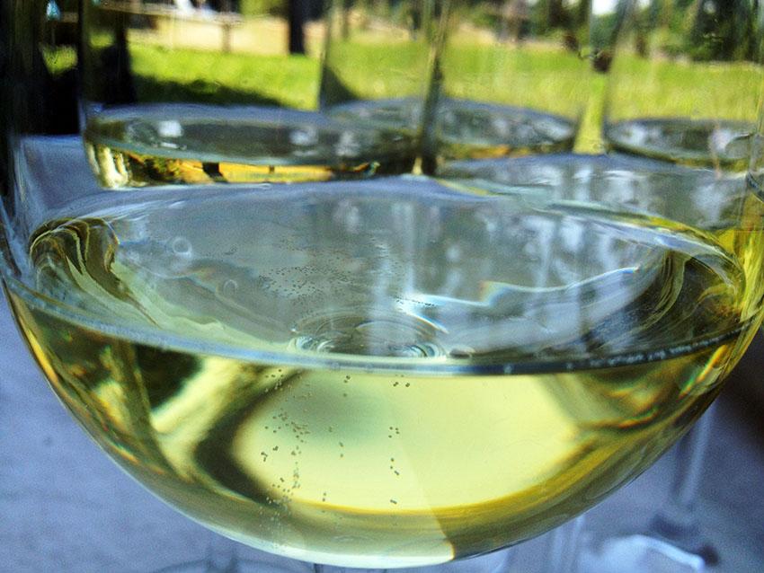 Italian top wine franciacorta Coronea